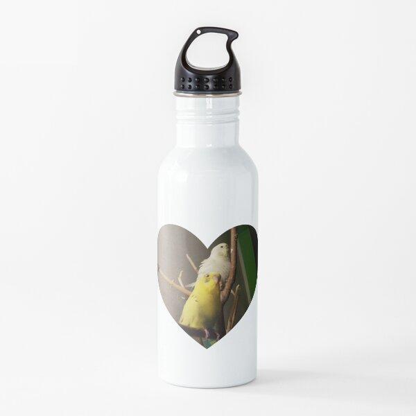 Budgies heart love Water Bottle