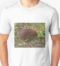 Echidna, Tasmania, Australia T-Shirt