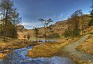 Blea Tarn..Path & Stream by Jamie  Green
