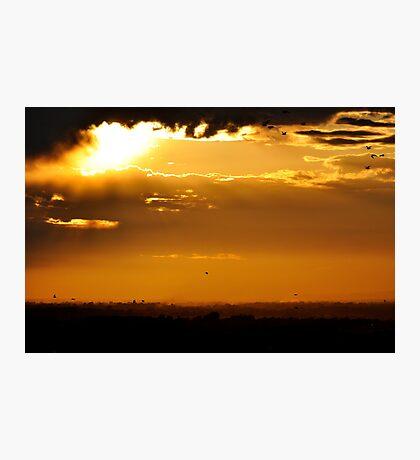 Golden Land Photographic Print