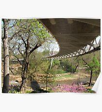 Liberty Bridge over the Reedy River Falls Poster