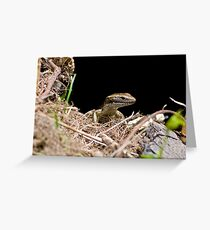 skink Greeting Card