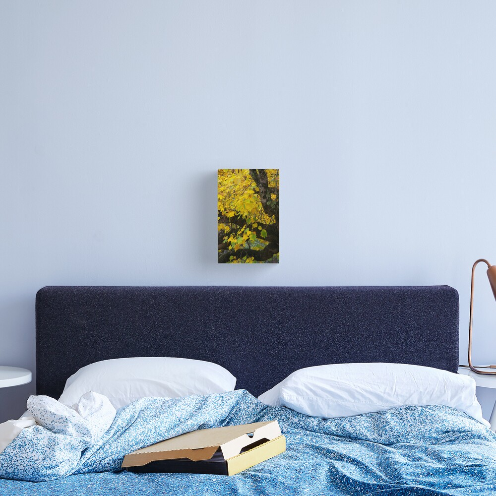 Burnished By Autumn's Peerless Brush Canvas Print