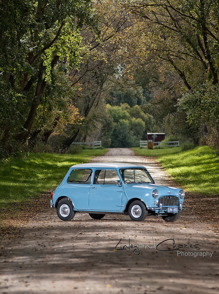 One small Mini by LinleyandCharles Photography