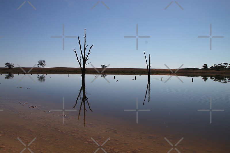 """Still Water Reflections"" Framed Prints by Michelle Munday ..."