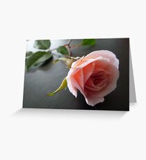Petit Cecile Brunner Greeting Card