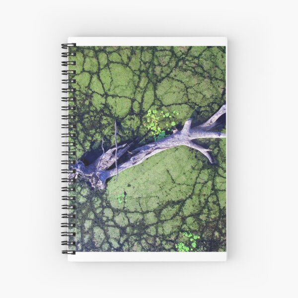 The Boynedale Tree Spiral Notebook