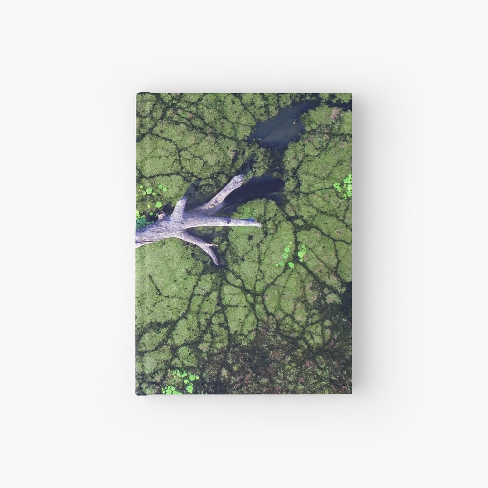 The Boynedale Tree Hardcover Journal