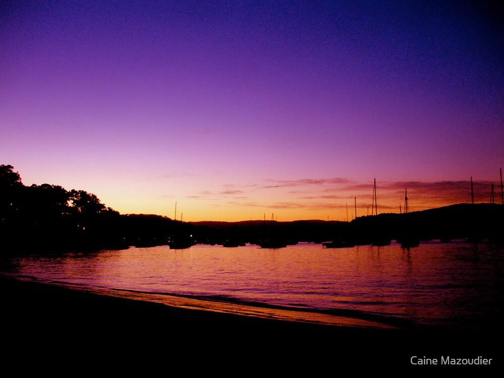 Purple Haze by Caine Mazoudier