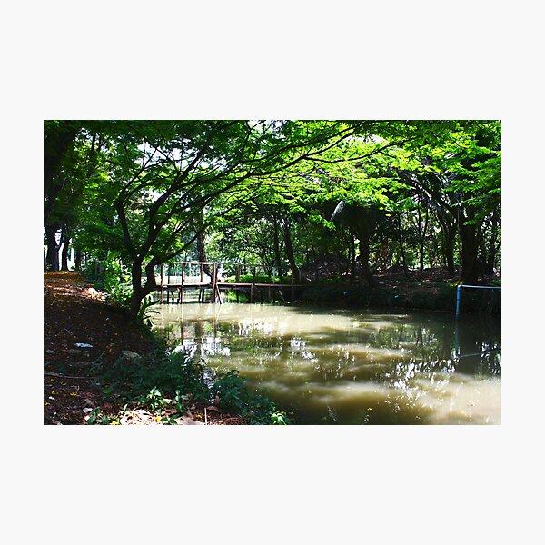Greenshade - Canal noon Photographic Print