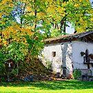 Old little barn shed in Leutasch Tyrol Austria by Elzbieta Fazel