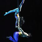 Aerial Acrobatics by Robin Black