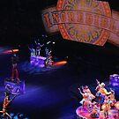 Incredible Circus by Robin Black