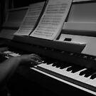 Sheet Music  by DearMsWildOne