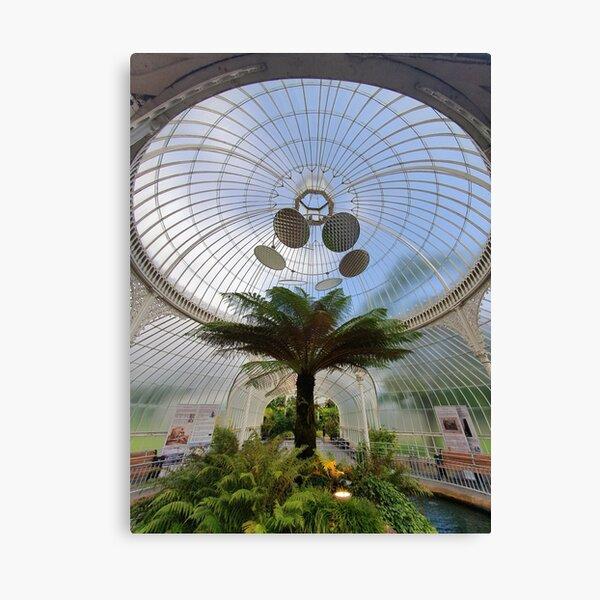Glasgow Botanic Gardens Canvas Print
