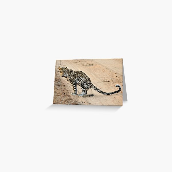 Leopard doing business Greeting Card