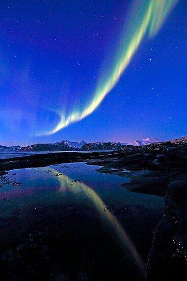 Reflection by Frank Olsen