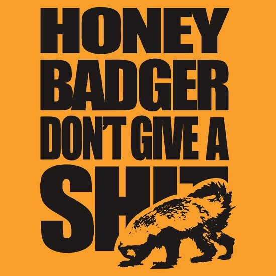 TShirtGifter presents: Honey Badger Don't Give A Shit