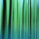 Bluebell Abstract by Catherine Hadler