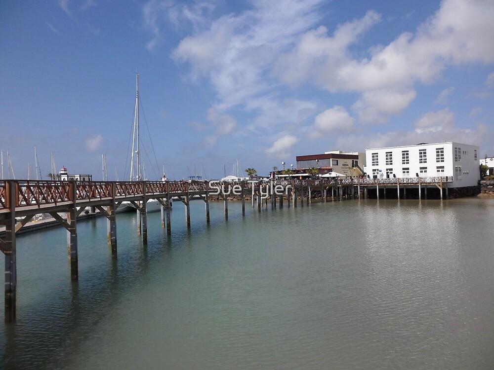 Rubicon Marina, Lanzarote by Sue Tyler