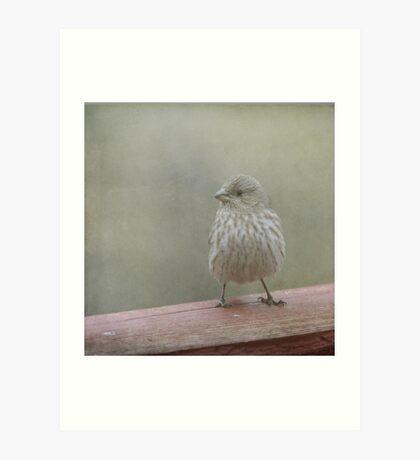 A Little Birdy Told Me Art Print