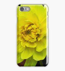 Yellow Dahlia iPhone Case/Skin