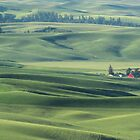 Palouse Valley farm by Linda Sparks