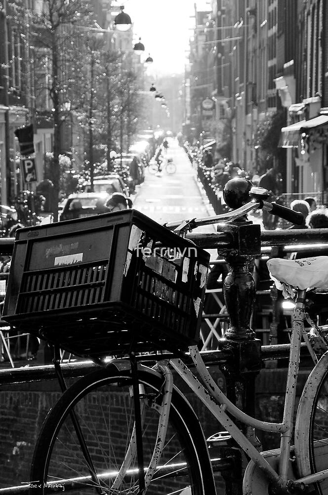Amsterdam Bike by ferryvn
