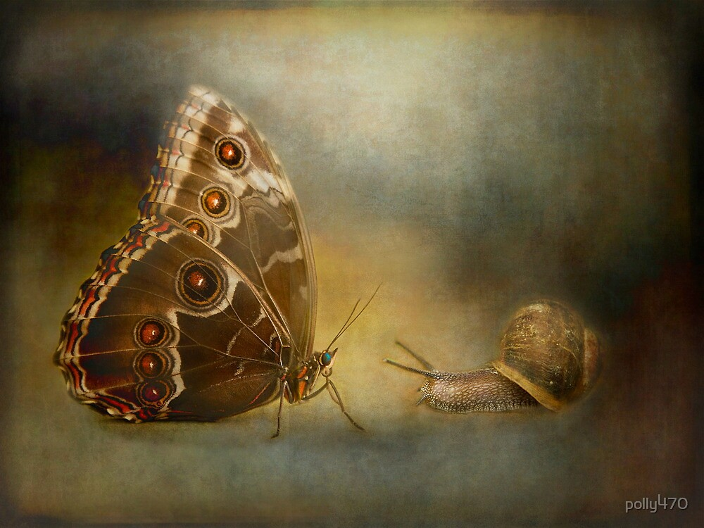 Brian asked the butterfly...... by polly470