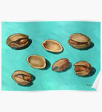 stash of pistachios Poster