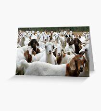 Goats - Yarck Greeting Card