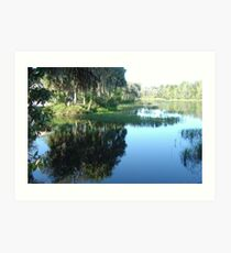 Rainbow River ~ Dunnellon, Florida Art Print