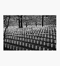 Freedom's Price Photographic Print