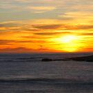 island. eastcoast, tasmania by tim buckley   bodhiimages
