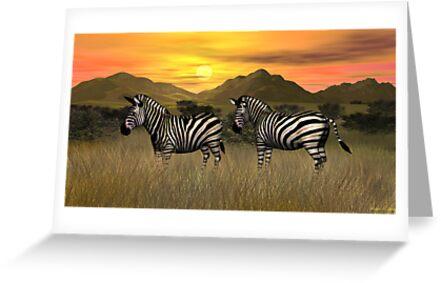 Sunset Zebras by Walter Colvin