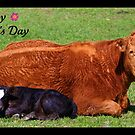 Happy Mother's Day by Angie O'Connor