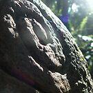 Petroglyph by Aaron Baker