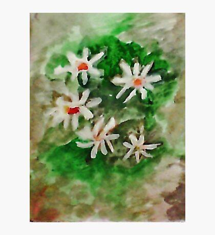 Antique Floral #3, watercolor Photographic Print