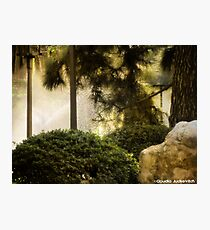 Dreamy state - Buenos Aires Photographic Print
