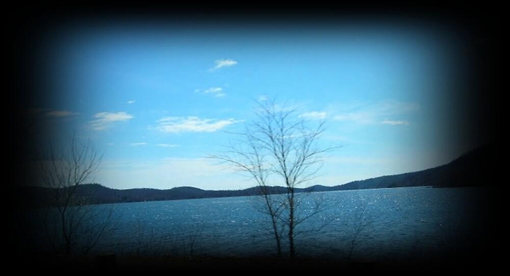 """Lake by Scott """"Bubba"""" Brookshire"""