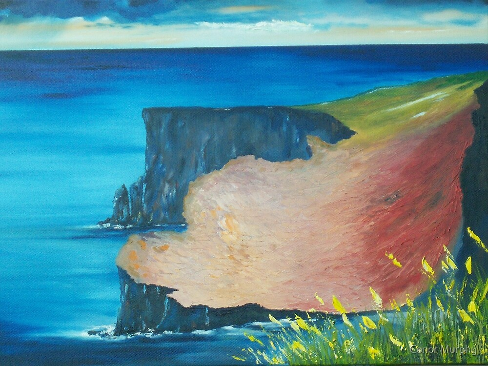 The Cliffs of Moher by Conor Murphy