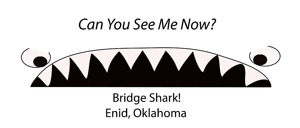 Bridge Shark: Can You See Me Now? by SeeMeDigital