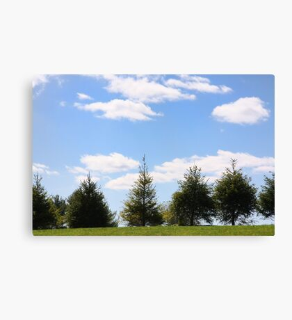 Picture Perfect Sky Canvas Print