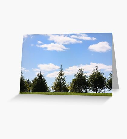 Picture Perfect Sky Greeting Card