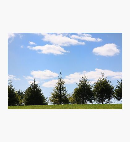 Picture Perfect Sky Photographic Print