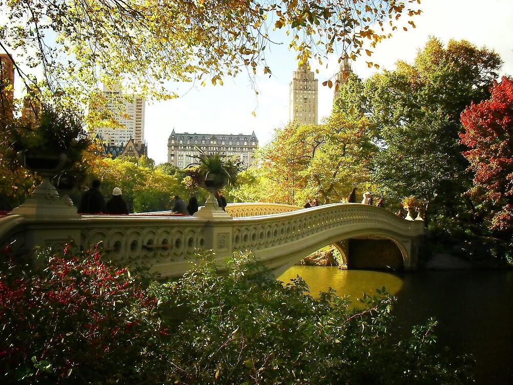 Bow Bridge Central Park in Autumn by Vivienne Gucwa