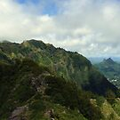 Kaluanui Ridge by Aaron Baker