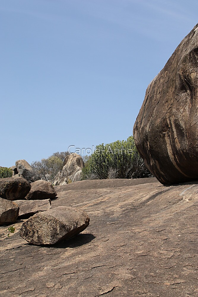 View at Drum Rock, Tanzania by Carole-Anne