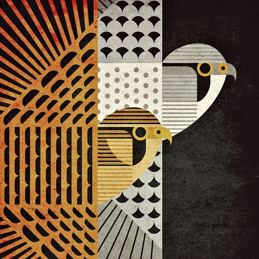 Eurasian Kestrels by Scott Partridge