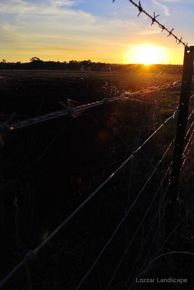 Along the Country Fence by Lozzar Landscape